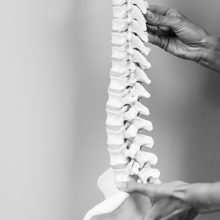 Chiropractic Westford MA Neck Pain